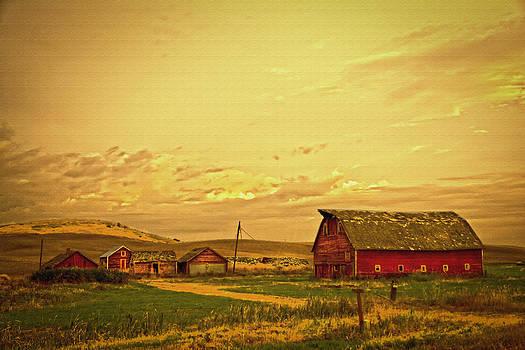 Randall Branham - Golden Glow Farm