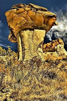 Adam Jewell - Golden Hoodoo