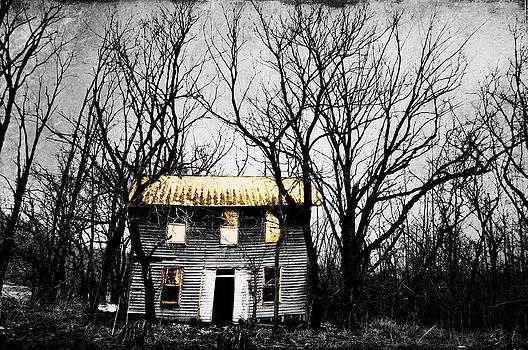 Emily Stauring - Golden House