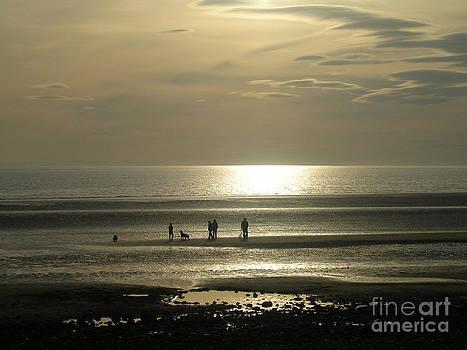 Golden Light on Walney Beach by Avis  Noelle