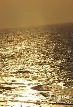 Gail Matthews - GOLDEN MOONLIGHT or Moon Surface