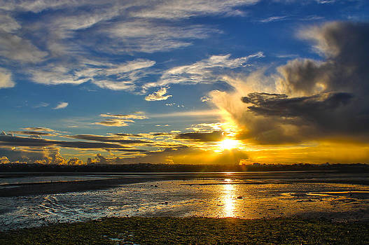 Golden Rays by Eagle Eye Photographers