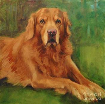 Golden Retreiver by Pet Whimsy  Portraits