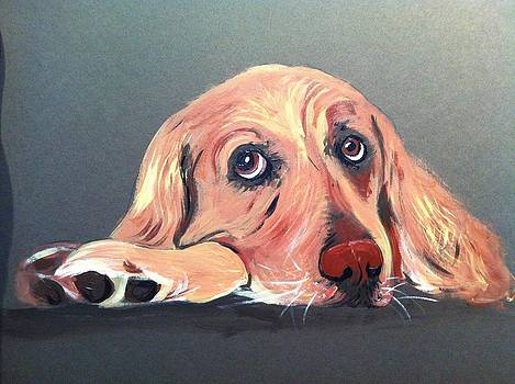 Golden Retriever by Tracey Bautista