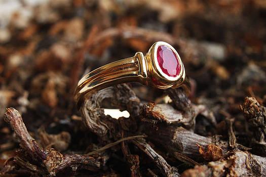 Golden ring by Diana Dimitrova