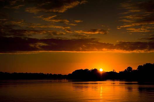 Golden Sunrise by Eleanor Ivins