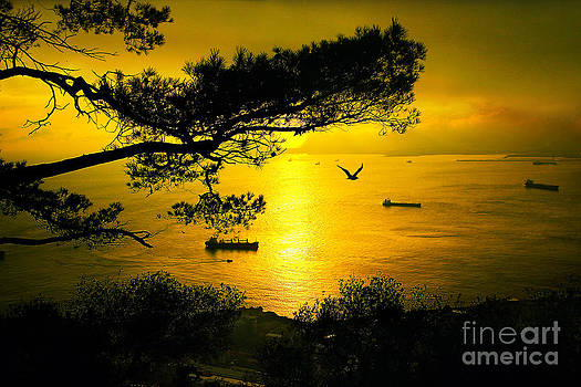 English Landscapes - Golden Sunset Gibraltar