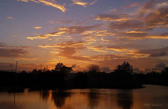 Golden Sunset by Mikki Cucuzzo