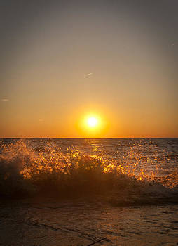 Golden Surf by Cindy Haggerty
