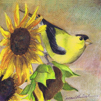 Goldfinch and Sunflowers by Susan Herbst