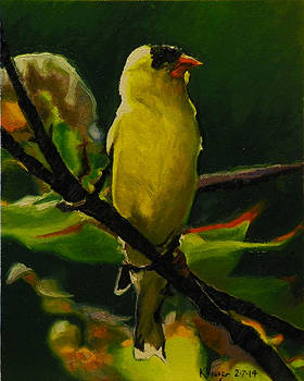Goldfinch by Kenneth Young