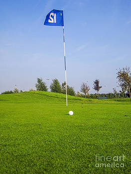 Patricia Hofmeester - golf ball near hole with flag and number
