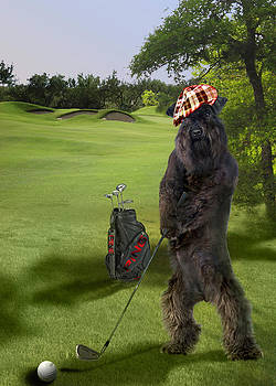 Terrier golfing putting greens by Gina Femrite