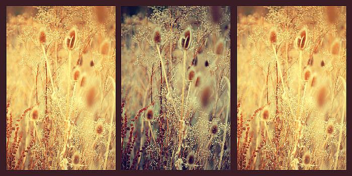 Jenny Rainbow - Golgen Shades of Wild Grass. Triptych