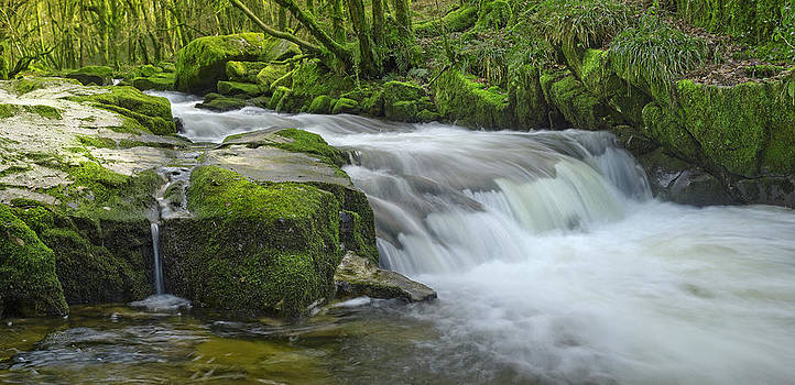 Golitha Falls by John Chivers