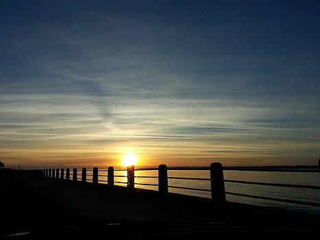 Good Morning Carolina by Joetta Beauford