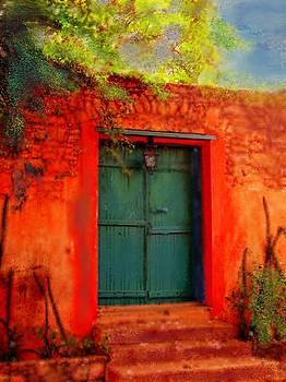 Goree Dakar Doorway by Carol Sullivan