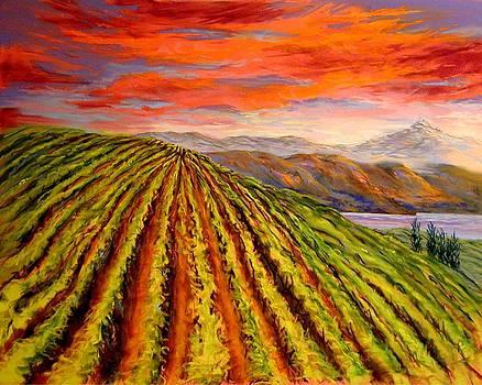 Gorge Vineyard by Lynee Sapere