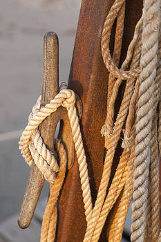 Got enough Rope  by Eugene Bergeron