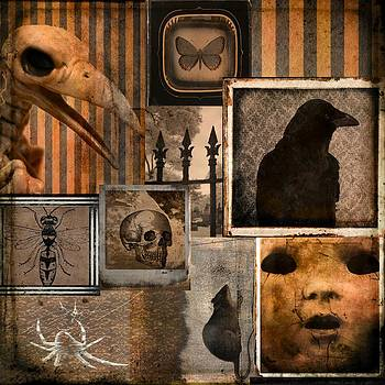 Gothicolors Donna Snyder - Gothic Menagerie