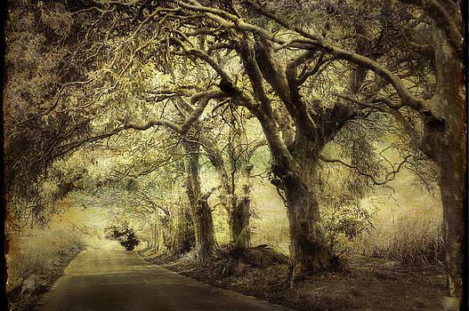 Jenny Rainbow - Gothic Road