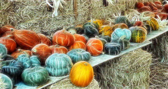 Cindy Nunn - Gourds A Plenty