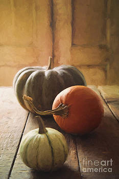 Sandra Cunningham - Gourds and pumpkin on kitchen table/ digital painting