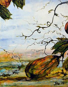 Gourds by Jennifer  Creech