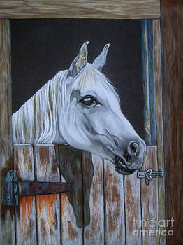 Grace at the stable door by Yvonne Johnstone
