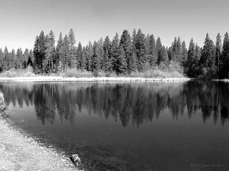 Joyce Dickens - Grace Lake Reflections In Black and White