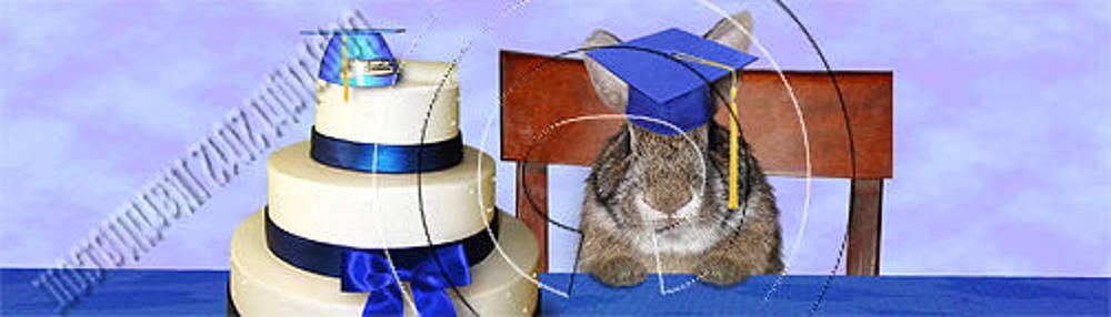 Jeanette K - Graduation Bunny Rabbit # 546