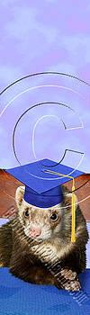 Jeanette K - Graduation Ferret # 540