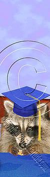 Jeanette K - Graduation Raccoon # 533