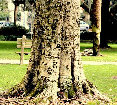 Graffiti Tree by Pete Dionne