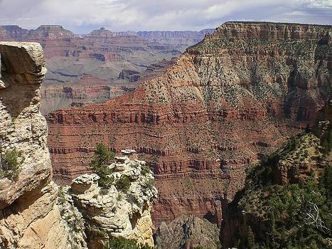 Grand Canyon by Carol Cabler