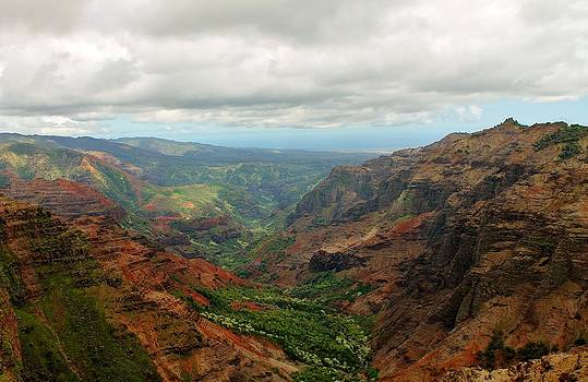 Grand Canyon of The Pacific by Robert Pennix