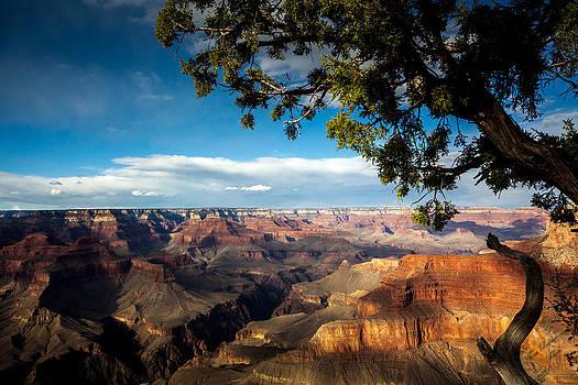 Grand Canyon Splendour by Tom Buchanan