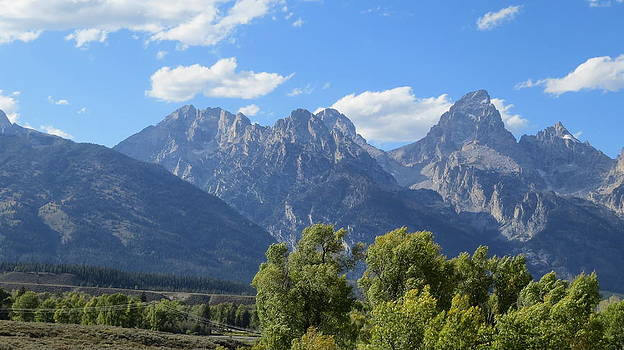 Grand Tetons by Diane Mitchell