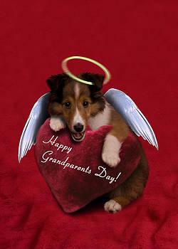 Jeanette K - Grandparents Day Angel Sheltie