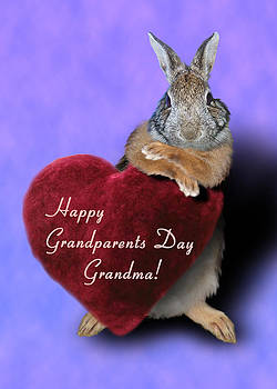 Jeanette K - Grandparents Day Grandma Bunny