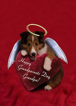 Jeanette K - Grandparents Day Grandpa Angel Sheltie