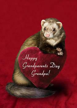 Grandparents Day Grandpa Ferret by Jeanette K