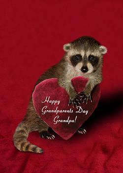 Jeanette K - Grandparents Day Grandpa Raccoon