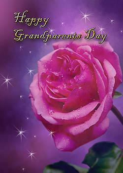 Jeanette K - Grandparents Day Rose