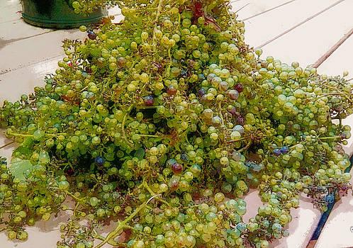 Grape harvest by John Stuart Webbstock
