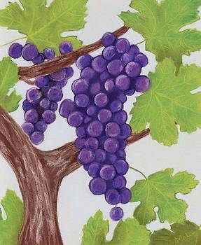 Anastasiya Malakhova - Grape Vine
