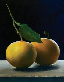 Grapefruit by Anthony Enyedy