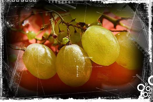 Grapes by Ajithaa Edirimane