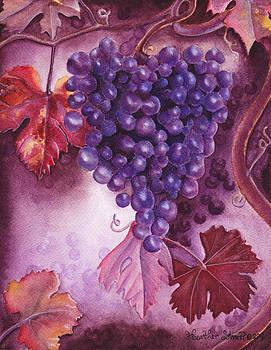 Grapes by Heather Stinnett