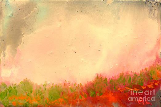 Grass fire by Al Hunter